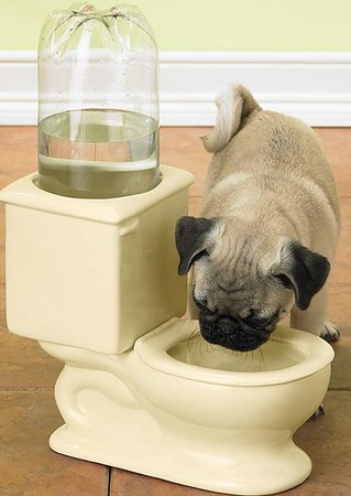 Ceramic Pet Water Bowl