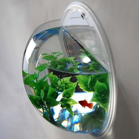 Wall Mount Fishbowl