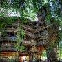 Tennessee - Minister's Tree House