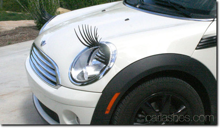 Carlashes - Car Lashes