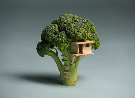 Laser Bread - Broccoli House