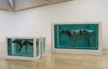 Damien Hirst - Mother and Child, Divided