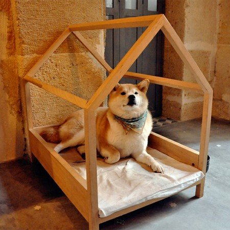 le Petit Atelier de Paris - Wood-frame Bed (and Akita)
