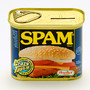 SPAM - SPAM CAN BANK