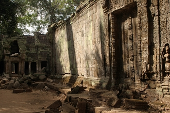 Cambodia - Ta Prohm Temple