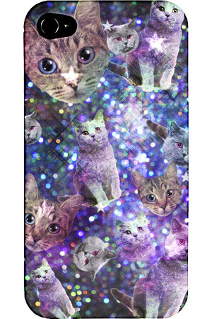 Image of cats
