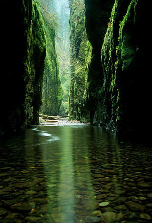 "Oregon - ""EMERALD GORGE"" Columbia River Gorge"