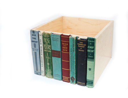 RoadsidePhotographs - Modern Library Storage Bin